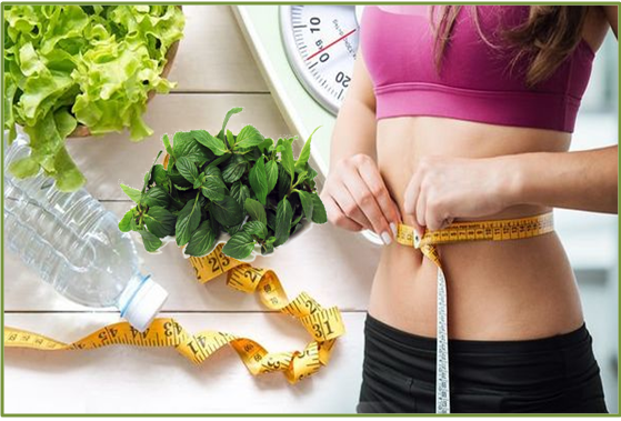 best online diet consultation